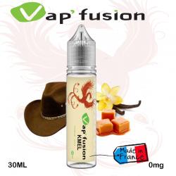 E liquide Classic Kmel 20ml + booster nicotiné-  Vapfusion