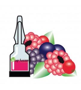 Arome fruits des bois Vap'fusion